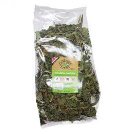 Nature First Dandelion leaf Mix 100g