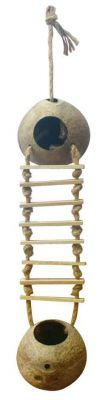 Twin Coconut Ladder Small Animal Climber