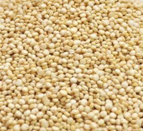 Quinoa 1kg Rat Treat White