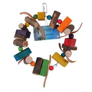 Wood And Leather Ring Play Toy