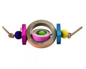 Bangle Spinner Chew Toy