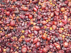 Tidymix Berry Supreme Treat - 500g