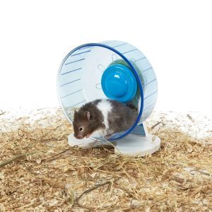 Rodent Wheel Small
